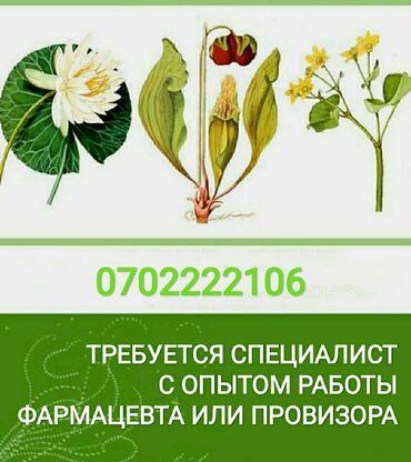 вакансия фармацевта в Кыргызстан: Фармацевт. 5/2. Восточный автовокзал