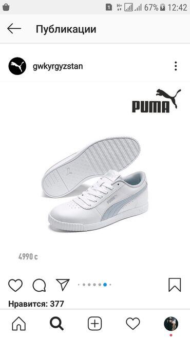 Puma оригинал