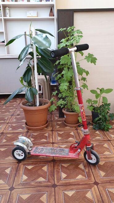 Scooter 12 yaşa qədər uşaqlar üçün istifadə edilə bilər