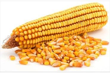 Продаю Рушенную кукурузу в Шопоков