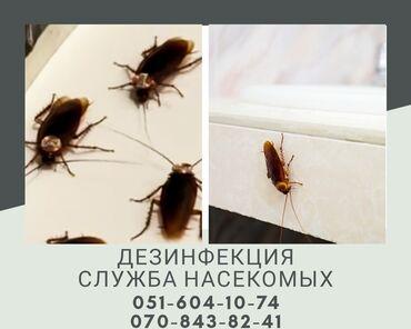 - Azərbaycan: Dezinfeksiya heserat eleyhine xidmet sirketimiz terefinden obyekt bag