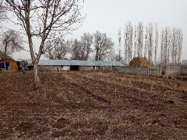 щитовые дачные дома в Кыргызстан: Продажа 30 соток Для сельского хозяйства от собственника