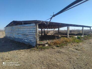 диски бу р14 в Кыргызстан: Продам соток Для сельского хозяйства от собственника
