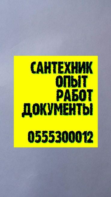 сантехники бишкек  недорого гарантия большой стаж с нами выгодно в Лебединовка