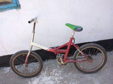 Обменяю велосипед на кроликов
