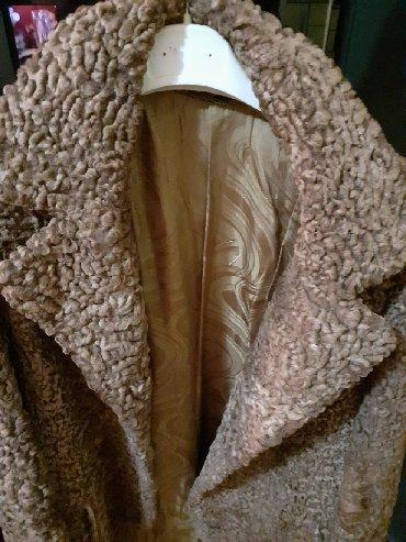 Moderna kratka bunda - Srbija: Zenska bunda od astragana. Med boje. Pozadi moderno ukrojena. Duzina