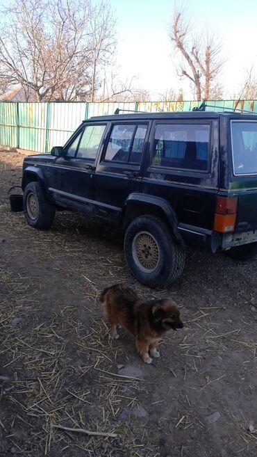 Jeep - Бишкек: Jeep Cherokee 4 л. 1991
