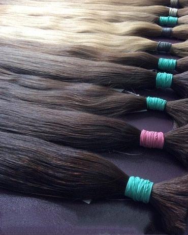 Другое в Кыргызстан: Продаю Натуральные волосы. Срезы для наращивания волос #6.0, #6.2
