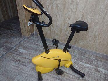 Велотренажер. PROTEUS DOLPHIN Дельфин Итальянский бренд. Очень