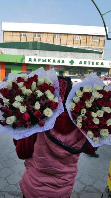Розы по оптовым ценам в Бишкек