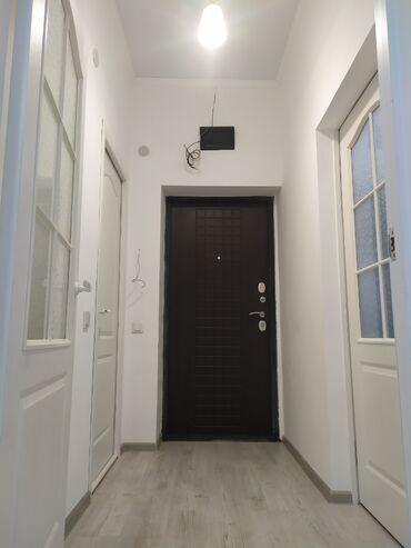 гребень от вшей в аптеке бишкек in Кыргызстан | ДРУГОЕ: Элитка, 1 комната, 35 кв. м Лифт, Без мебели