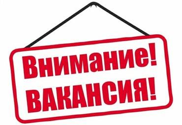 Требуется мерчендайзер ! в Бишкек