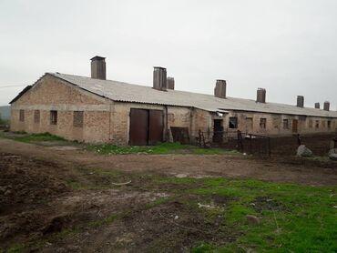 Продаю участок оборудованный под животноводческую ферму в селе