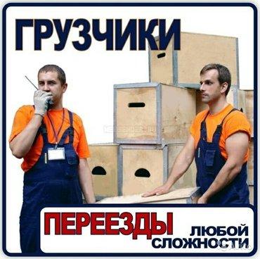 Грузчики, переезды, такелаж город в Лебединовка - фото 3