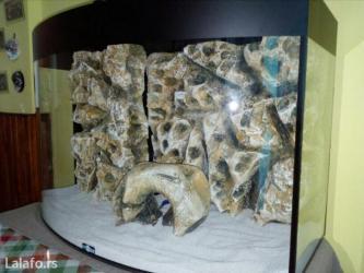 Akvarijum sa 3d pozadinom, prednjim zakrivljenim staklom 100l u sebi - Nis