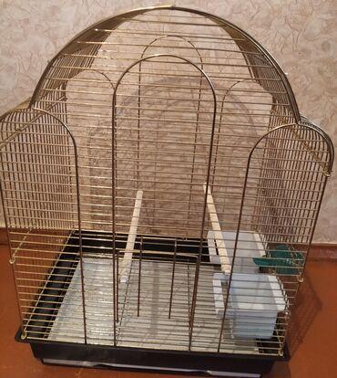 накидка на клетку попугая в Кыргызстан: Продаю большую клетку для попугая