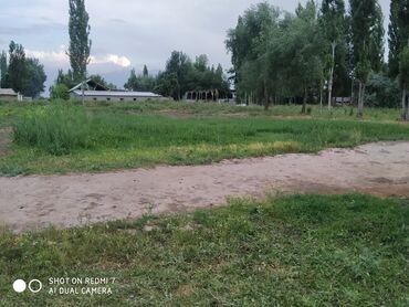 Недвижимость - Буденовка: 8 соток, Для строительства, Собственник, Договор купли-продажи