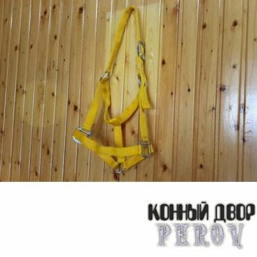 Недоуздок тесменной в Бишкек
