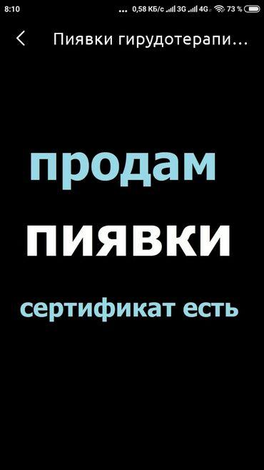 Другие медицинские товары - Кыргызстан: Продаю пиявки оптом и в розницу. Есть сертификат