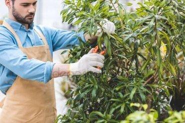 Требуется садовник  в компанию «Abaihan» в Бишкек