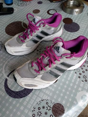Ženska obuća | Zrenjanin: Adidas patike br 39 1 /3 u jako dobrom ocuvanom stanju. Bez ostecenja