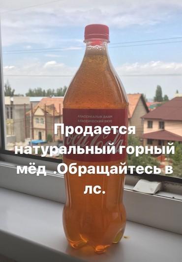 Питание, кейтеринг в Бишкек
