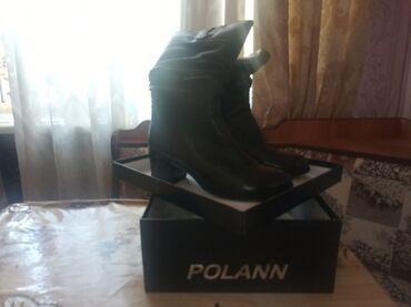 Женская обувь в Кант: Продаю сапоги (новые) 37 размер (кожа) фирмы POLANN цена: 5000 с