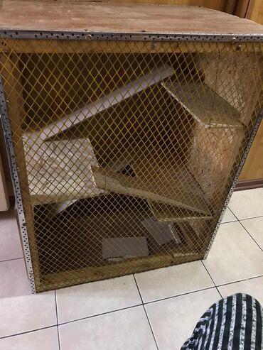 Шиншиллы в Кыргызстан: Продаю клетку для домашних животных грызунов, лесники можно убрать, дл