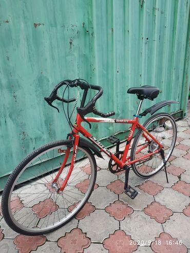 сиденье детское для купания на присосках в Кыргызстан: Корейский велосипед для городской езды Алюминиевая рама, очень легкая