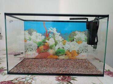 Продается аквариум точно как на фото
