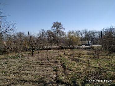 Torpaq sahələrinin satışı - Xudat: Torpaq sahələrinin satışı 8 sot Tikinti, Mülkiyyətçi
