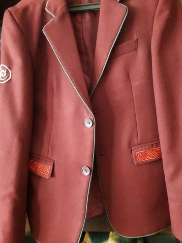 Продаю пиджак школьный в идиальном состоянии и брюки к нему. в Лебединовка