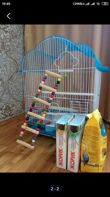 Продам клетку для птиц вместе с лесенкой, кормушками,поилкой и кормом