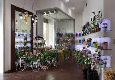сколько стоит камера для велосипеда в Кыргызстан: Продаю цветочный магазин. Готовый бизнес. Холодильная камера, агрегат