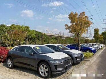 Jaguar - Кыргызстан: Jaguar 2020