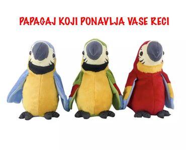 Papagaj koji ponavlja vase recipapagaj ponavlja svaku vasu rec ujedno