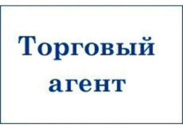 В частную компанию Isco требуется торговый агент! Требование:1.Старше в Бишкек