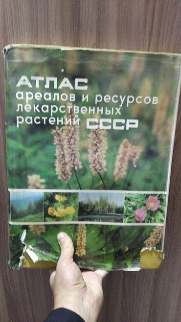 Атлас растений