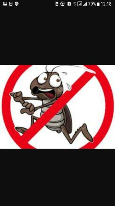 уничтожение!!! клопов, тараканов, насекомых и тд... без вреда гарантия в Бишкек