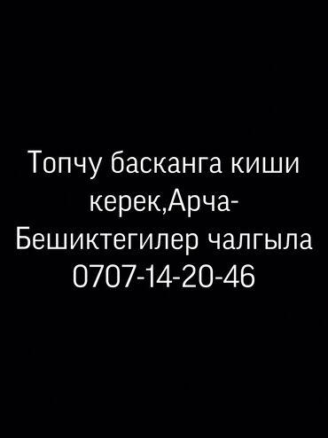 Пуговичницы - Кыргызстан: Пуговичница. С опытом. Арча-Бешик