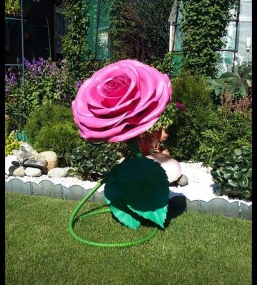 Большие цветы.  в Лебединовка