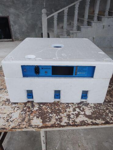 52 elan   HEYVANLAR: 60 yumurtalıq mini inkubator tam avtomat cəmi 4 dəfə bala çıxarılıb
