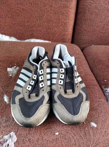 Мужская обувь - Кок-Ой: Продаю Красовки adidas