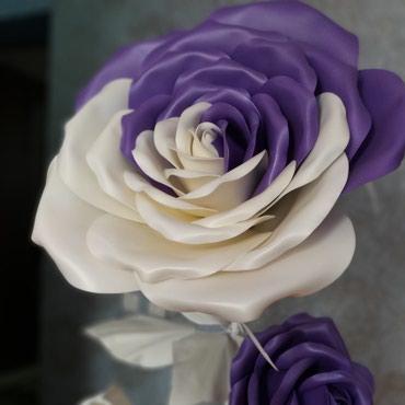 Интерьерные розы в Лебединовка