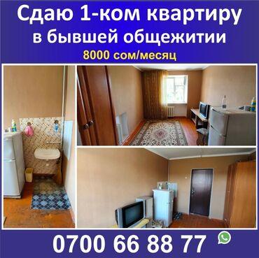 хаггис элит софт 1 цена бишкек в Кыргызстан: 1 комната, 12 кв. м С мебелью