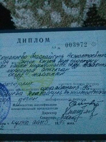 Ищу работу без опыта сертификат нет в Балыкчи
