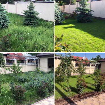 Ландшафтный дизайн, газон, полив, автополив, услуги садовника, озелене