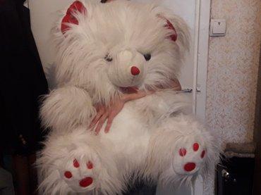 шкуры медведя в Кыргызстан: Продаю большого игрушечного медведя