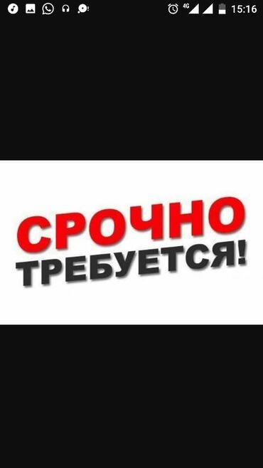 Плащи - Кыргызстан: Требуется помощник завсклада на постоянную работу( можно без опыта )