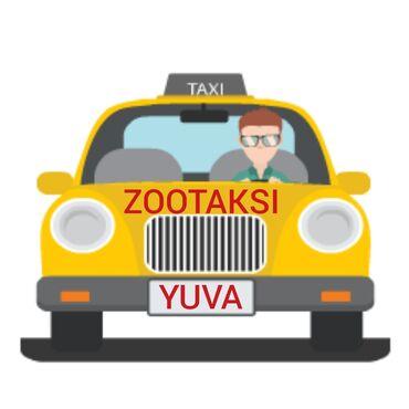 """yuva - Azərbaycan: """"YUVA ZOOTAKSI"""" xidmətinizdə.Müxtəlif sevimli ev heyvanlarının"""